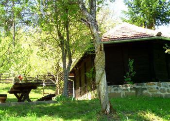 Crkva brnvara Lazarica i uvijene šljive